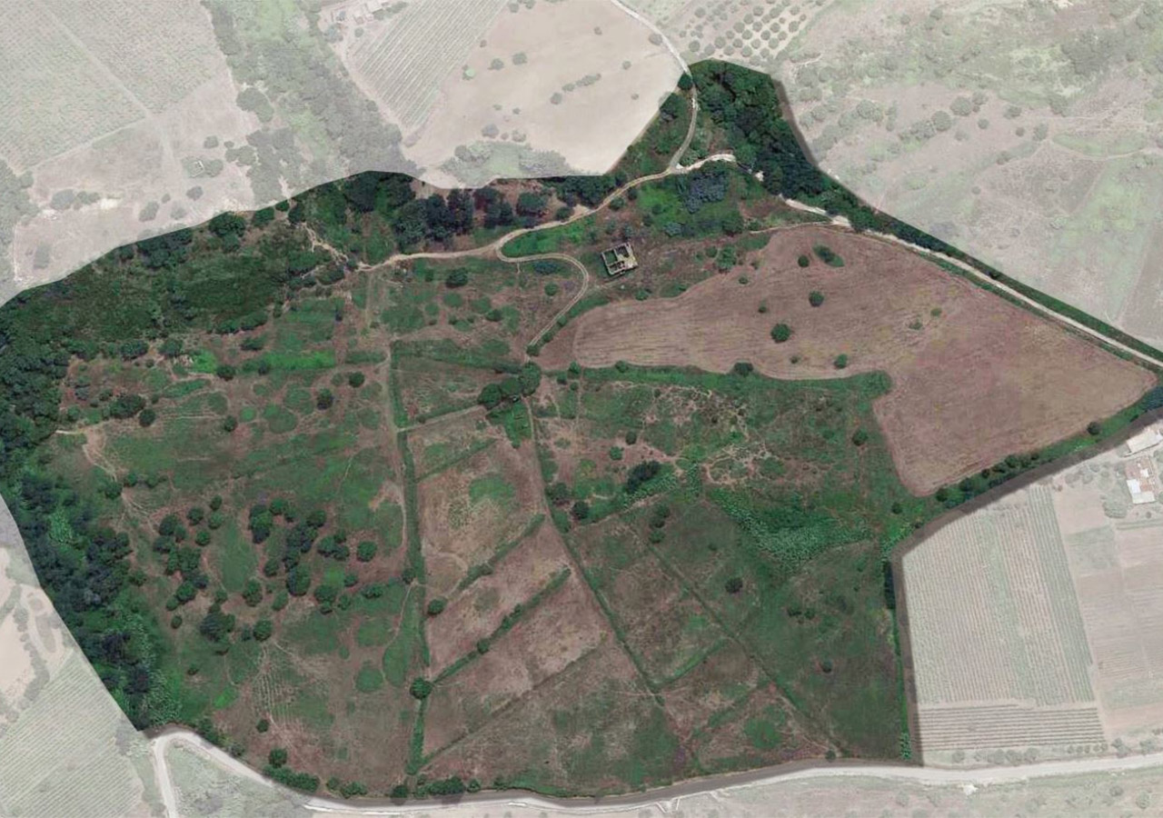 Purchase of land in Drapia